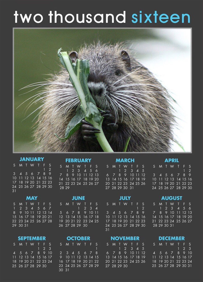 Nutria Kalender 2016