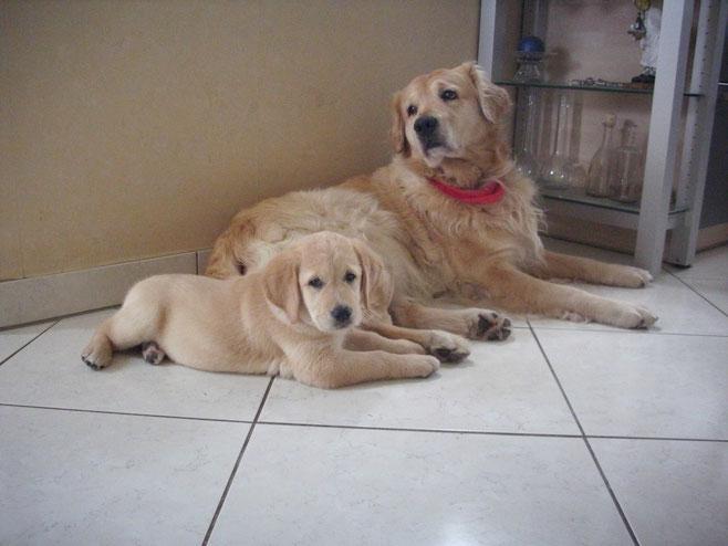 Charly und Juna 2009