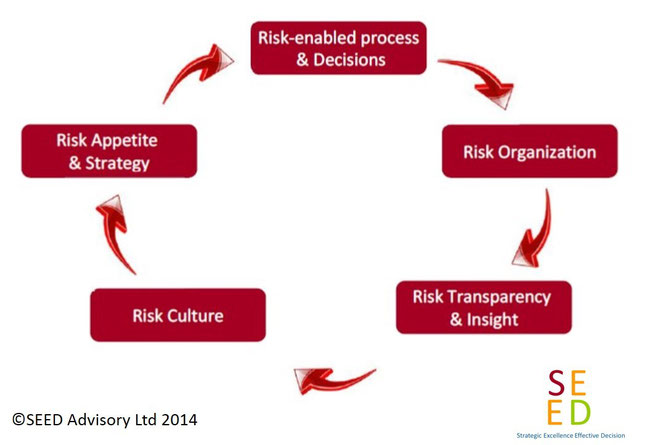 SEED Advisory Enterprise Risk Management Offering