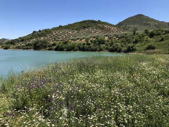Ontdek jezelf in de natuur van Spanje