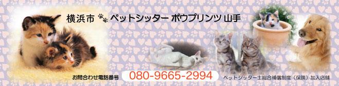 横浜市ペットシッター、横浜市キャットシッター 、中区ペットシッター、中区キャットシッター、山手、関内、 猫、南区、口コミ