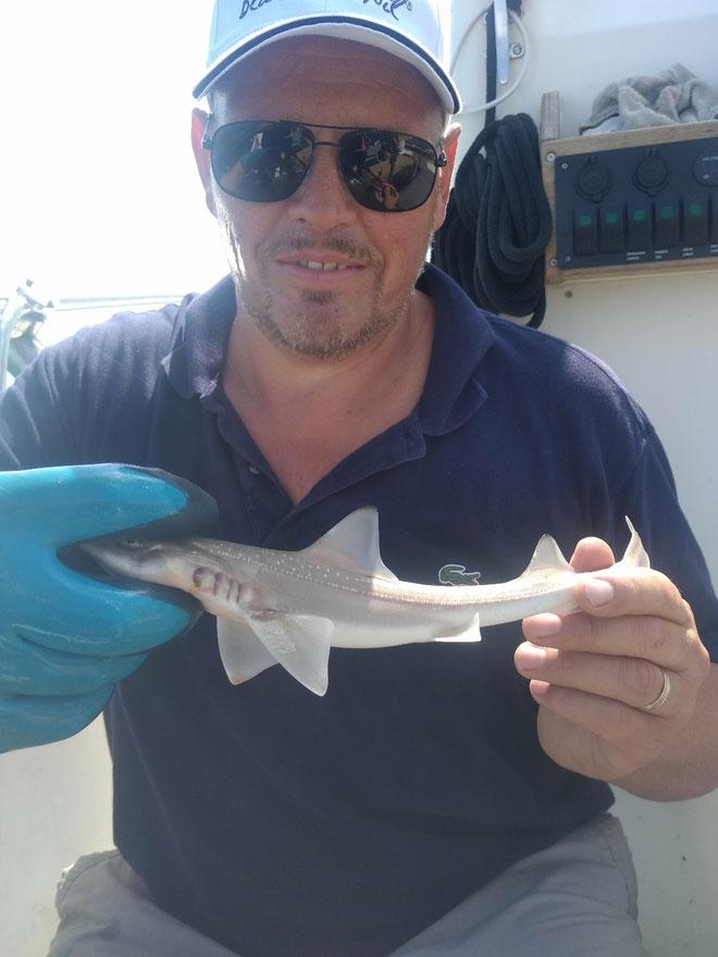 Premier requin à bord du Black flibeur