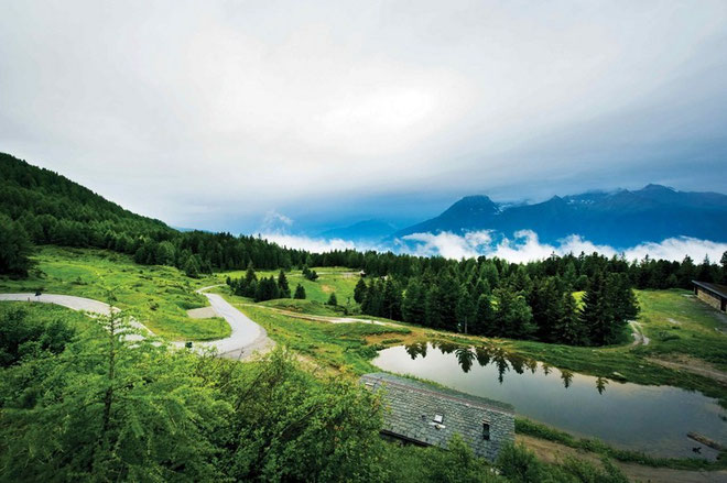 MORTIROLO*. (Lombardía, Italia). Altitud 1852 m /Longitud: 12.5 km / Pendiente media: 10.5% / Pendiente máxima 18%. Su sóla mención hace temblar al pelotón en pleno. El Mortirolo o como entrar en la l