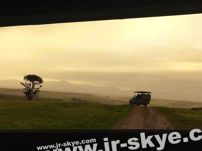 In Tansania #Serengeti #Ngorongoro: Festgehalten während einer Pirschfahrt aus dem Begleifahrzeug des rechts sichtbaren Gefährts - durchdrungen vom surrealem Licht eines der spektakulärsten Sonnenuntergänge, die ich je in Afrika erlebt habe...