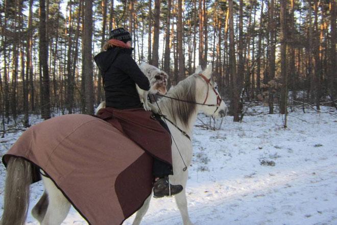 Besser schlecht geritten als gut gelaufen (meint der Hund - nicht die Reiterin!!)