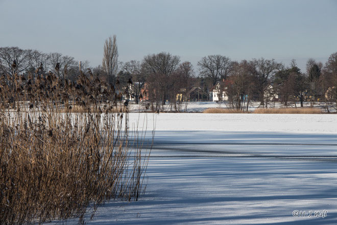 Winter am Lehnitzsee