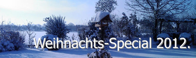 Weihnachts-Special 2012.