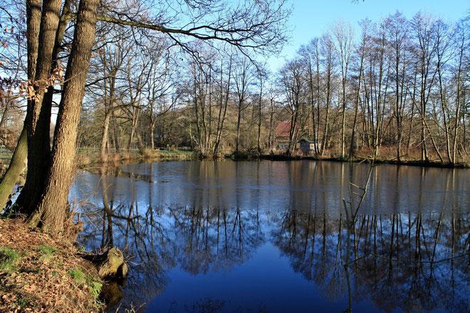 Mühlensee in Scheeßel