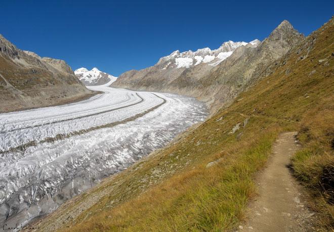 toller Wanderweg mit Blick auf den Aletschgletscher
