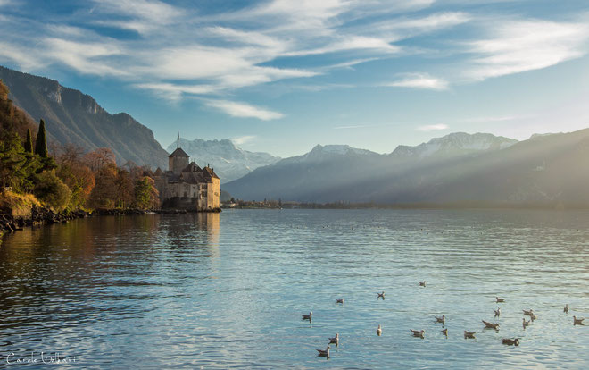 Als ich von Montreux zum Schloss spazierte, bot sich mir diese Aussicht.