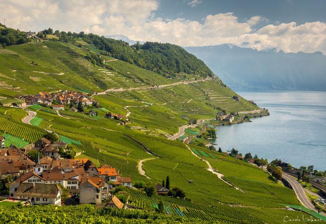 unten links ist das Dorf Riex und dahinter das Dorf Epesses zu sehen