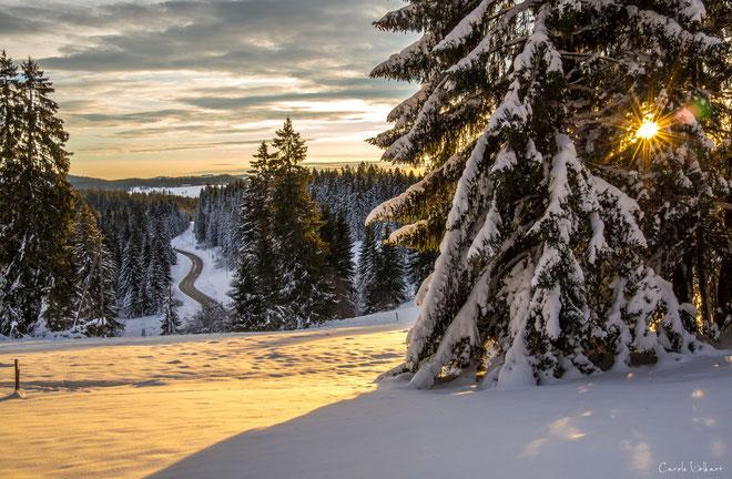 """Kurz nach Sonnenaufgang mit Blick ins """"Tal""""."""