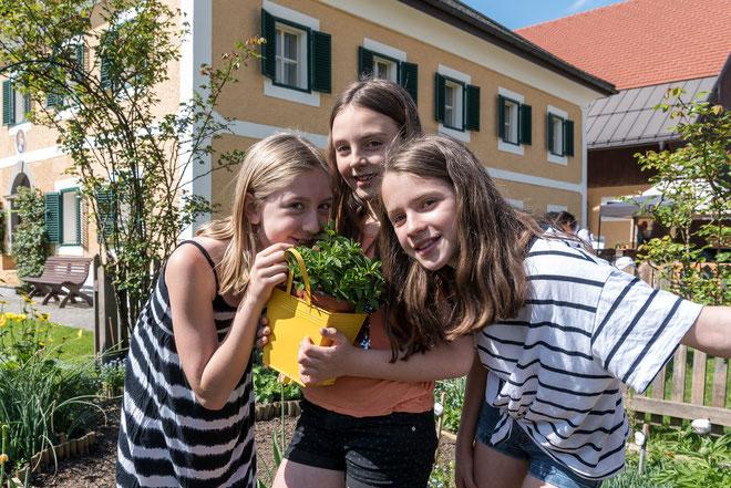 Bild: BlütenfestBiodorfSeehamAM.jpg © Tourismusverband Seeham/Albert Moser