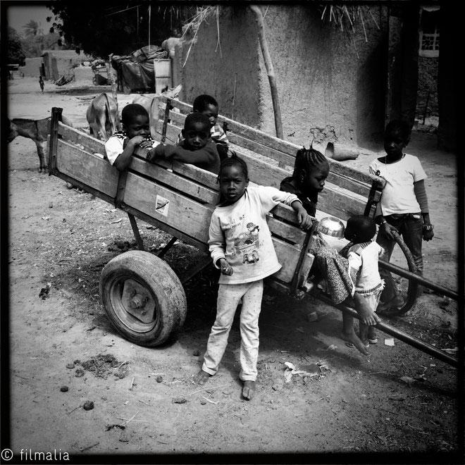Todos al carro. Douentza. Malí. africa