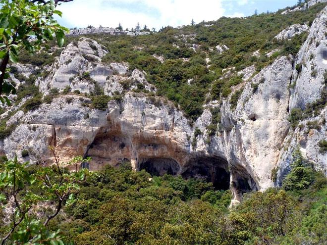 Les grottes de Font Scure