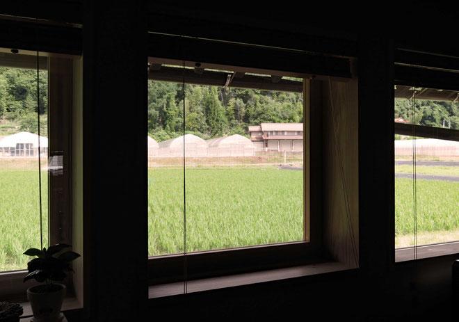 窓から見える田んぼの風景