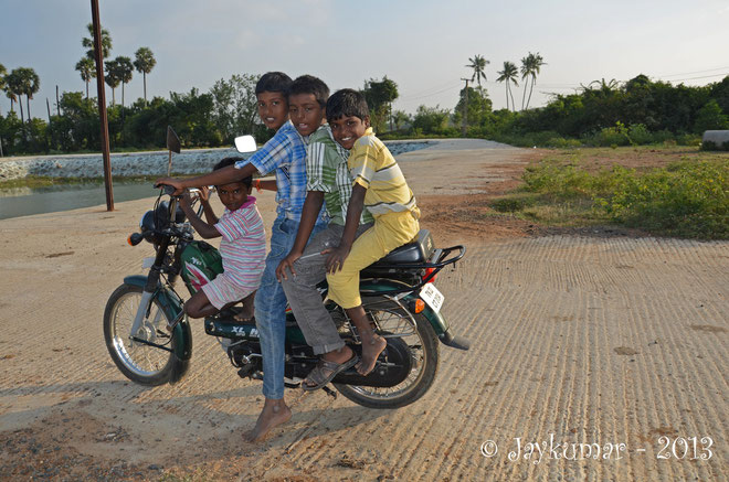 Come on, there is a place for a next boy !... - Photo Jaykumar - 2013
