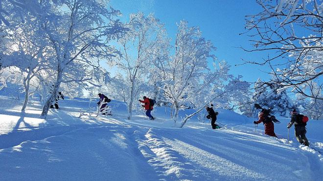 Japan-backcountry-ski-Tokachidake-Furanodake