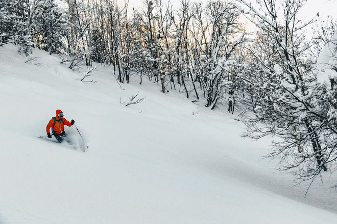 Otoe-Cat-Ski-Hokkaido-Japan