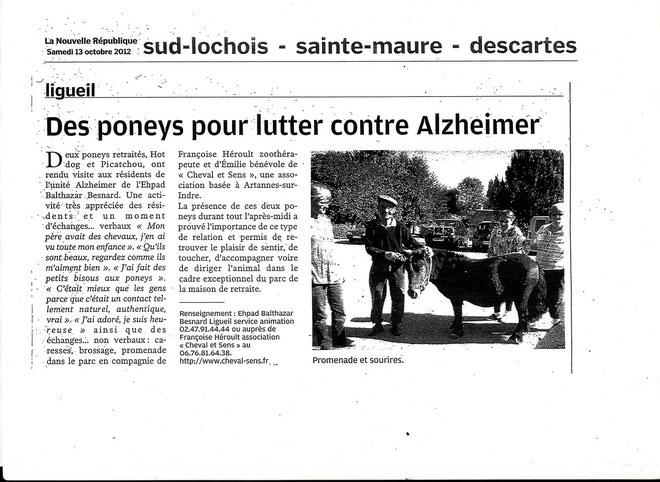Thérapie avec le poney pour les seniors atteints par la maladie d'Alzeimer