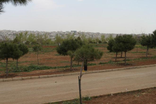 Amman vom Husseinpark gesehen.