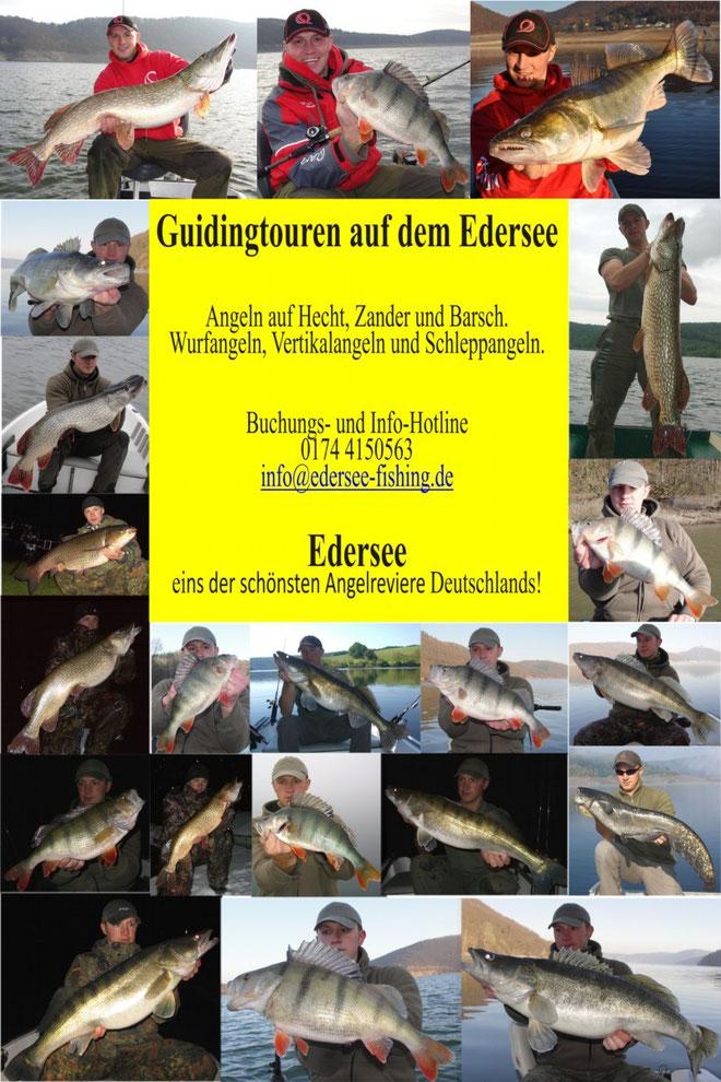 Guiding am Edersee, Fange deinen Traumfisch an einen der schönsten Angelreviere Deutschlands!