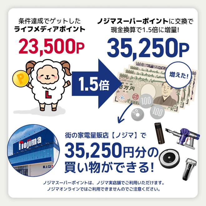 アンケートサイト比較一覧ランキング3位でノジ活して月収10万円