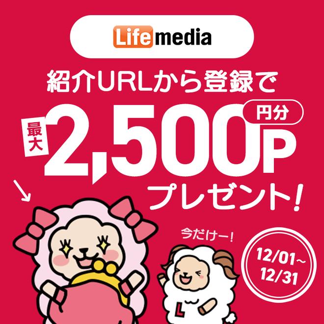 アンケートサイト比較一覧ランキング3位ライフメディアは月収10万円稼げる
