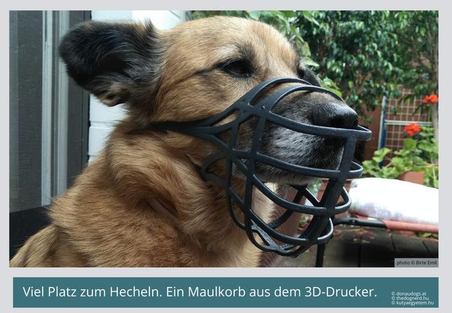 Maulkorb aus dem 3D-Drucker.