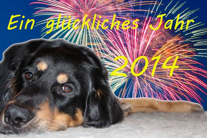 Ein glückliches Jahr 2014