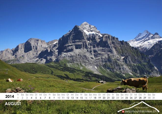 2014-08-Wetterhorn Grindelwald, Switzerland