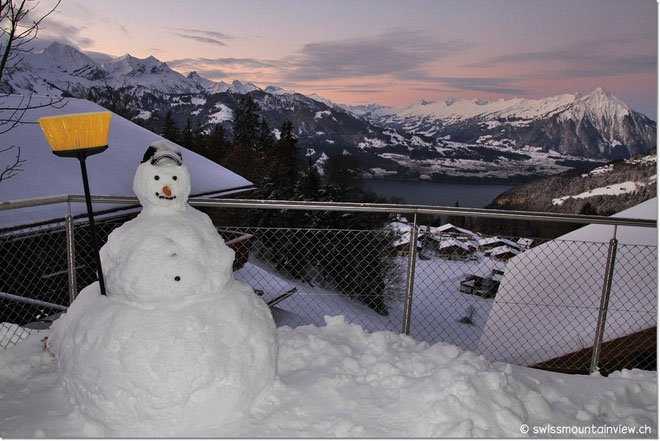 Chubby auf der Terrasse von swissmountainview.ch - made me smile whenever I Iooked at him
