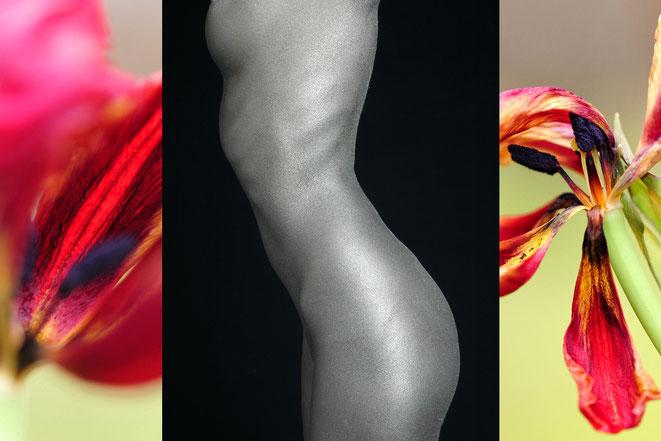 Foto: Andreas Ender, photo-art+painting   Portfolio: bodyART