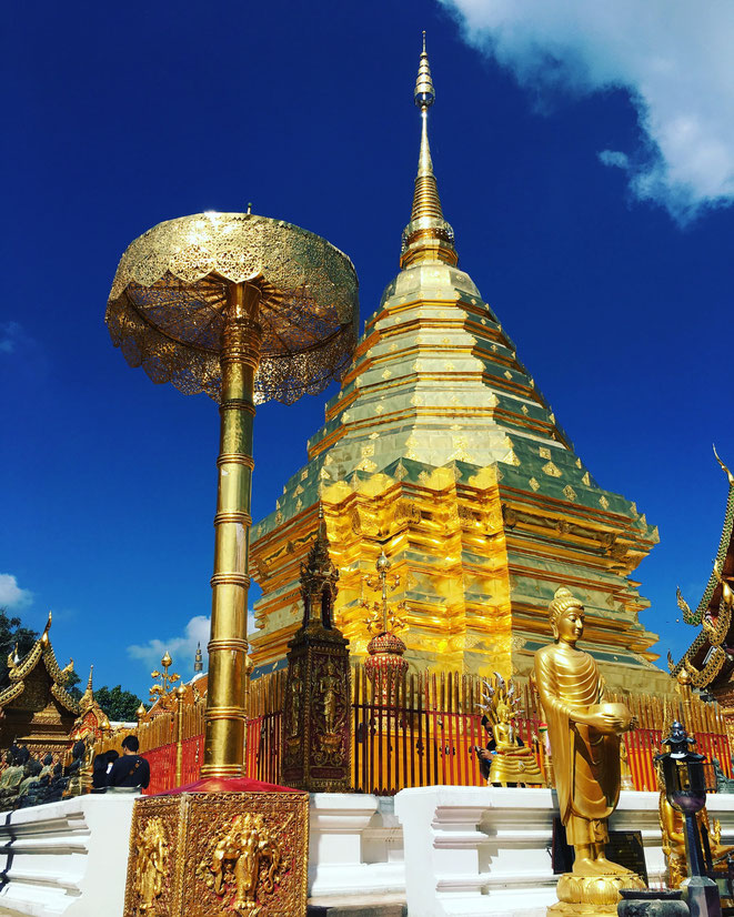 freaky finance, freaky travel, Park, Chiang Mai, Wat Phra That Doi Suthep, Tempel, Chedi