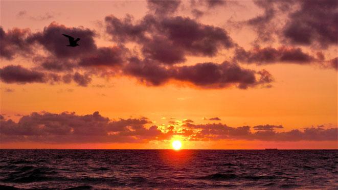 freaky travel, freaky finance, Meer, Sonnenaufgang, Atlantik, Miami Beach
