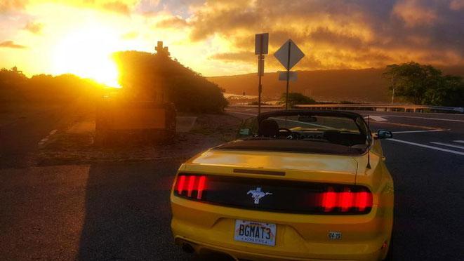 freaky travel präsentiert: Die Top 5 Tipp für deinen unvergesslichen Urlaub auf Hawaii in Amerika. Bestaune und genieße den atemberaubenden Sonnenuntergang in Hawaii am Scenic Point