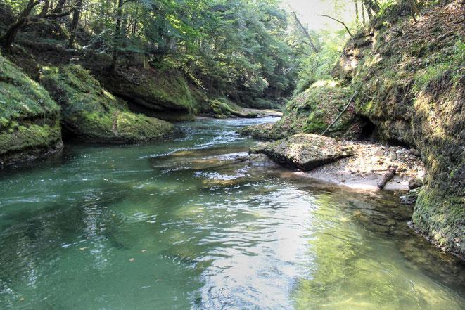freaky travel, Finanzlady, Gastartikel, Mostviertel, Niederösterreich, Erlaufschlucht, Erlauf, Fluss, Wasser