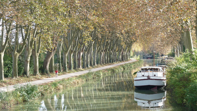 freaky running, Kanal, Canal du Midi, Boot, Wasser, Fahrradweg, Fahrrad, Bäume