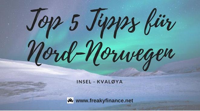 freaky travel, Lars, TOP 65, Norwegen, Lars, Polarlichter, Toptipps, Reisen, Insel, Nacht, Silvester