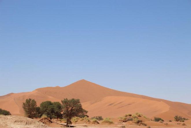 freaky travel, Gastartikel, Reiseberichte, Afrika, Namibia, Sossusvlei, TOP, Tipps, Orte, Stadt, freaky finance, Wüste, Sonne, Natur, Sand,