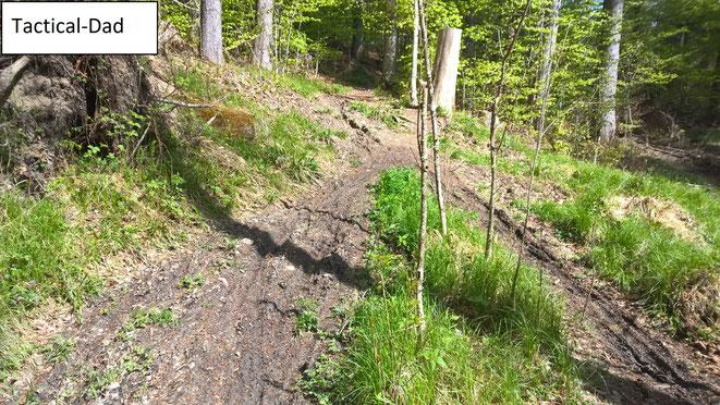 Als Jäger ist man immer sehr bemüht, dass das Wild Ruhe im Wald hat. Motorrad und Mountainbike Fahrer machen leider vieles zunichte.