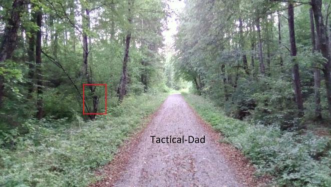 Für den Test montierte ich die Kameras offen wenige Meter neben den Weg.