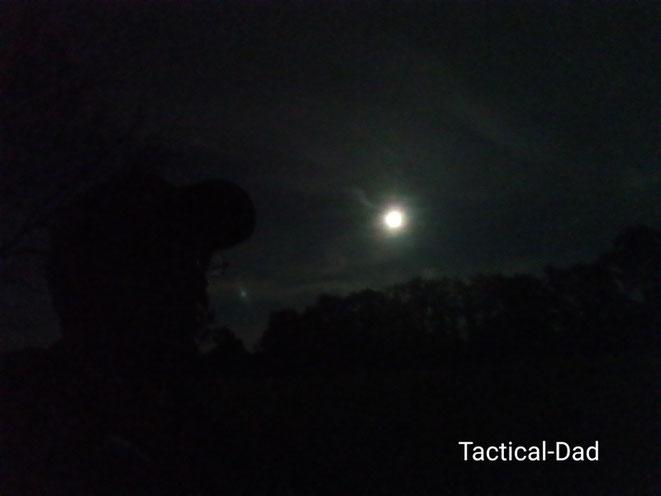 Der Vollmond schien wirklich stark und die Nacht hätte sich für Wilderer angeboten. Aber im Wald war zum Glück nur ich.