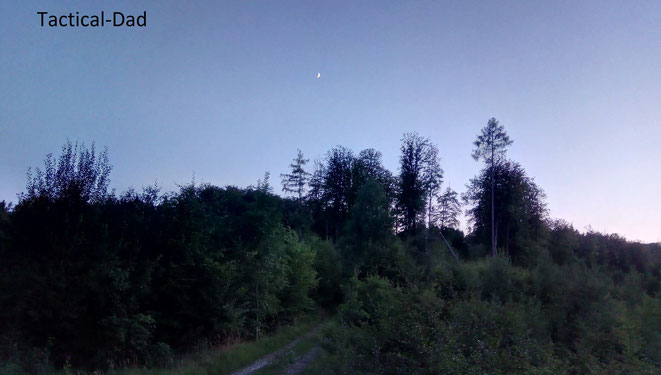 Es war ein sehr angenehmer Abend auf dem Hochsitz und ich fand die gesuchte Entspannung.