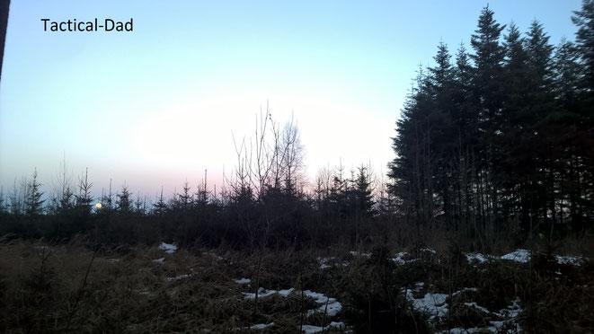 Ich beginne das neue Jahr meines Tagebuches mit einem Foto des aufgehenden Mondes im Wald.