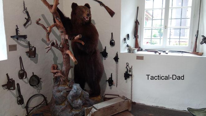 Zwischen den vielen zerleg- und verkürzbaren Wilderergewehren und Fallen steht das Präparat des letzten, im Jahr 1900, geschossenen Bären aus der Schweiz.