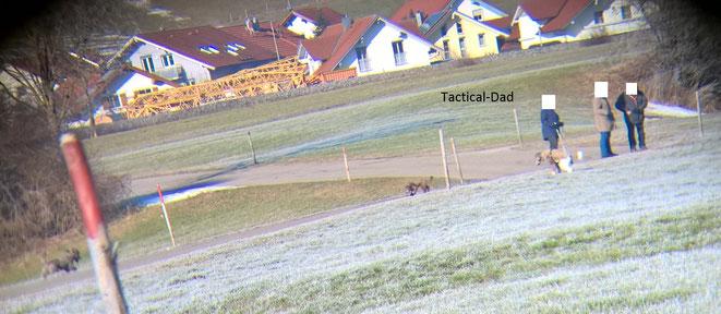Diese Leute sind wirklich jedem Jagdaufseher ein Dorn im Auge, sie lassen ihre Hunde frei durch die Hecken toben und vertreiben jedes Tier.  Beim Einschreiten sollte man sehr bedacht vorgehen, sonst sind Probleme vorprogramiert.