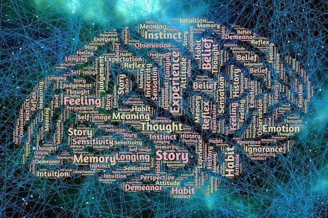 脳が作る意識イメージ