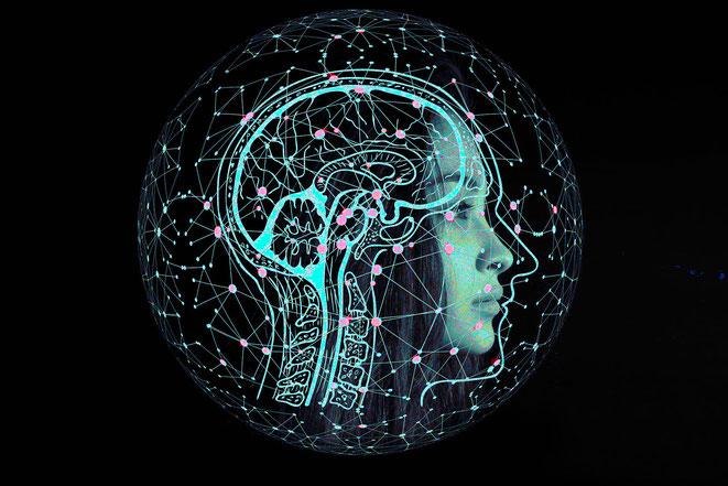 量子脳理論イメージ