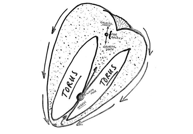 宇宙卵のトーラス(マクドネル・リポートより)
